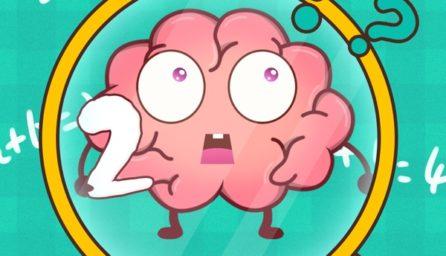 Brain Plug 2: Test your mind