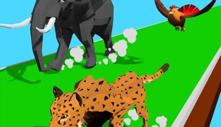 Animal Remodel:Yarn Dash 3D